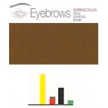 448 Brown 4 Cejas