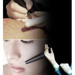 Curso de Higiénico Sanitario (micropigmentación y tatuaje)