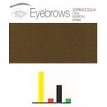445 Brown 1 Cejas