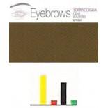 446 Brown 2 Cejas